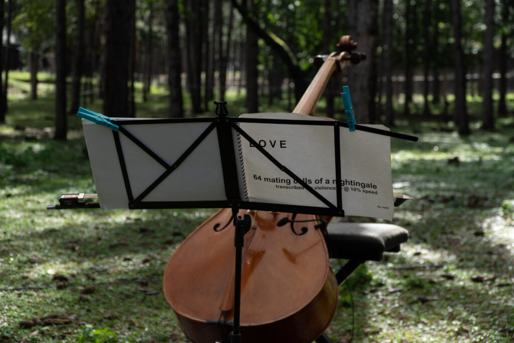 LOVE – 64 calls of a nightingale transcribed for violoncello @ 10% speed – noid